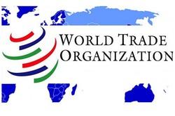 الصين تتقدم لمنظمة التجارة بشكوى من رسوم أمريكية مقترحة