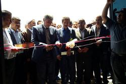 بهره برداری از یک واحد دامداری در شهرستان بوئین زهرا  آغاز شد
