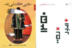 دو رمان شاه کشی و بیکتابی