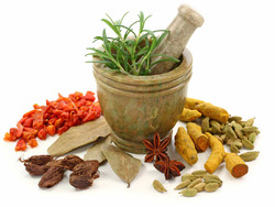 Iranian-Islamic traditional medicine