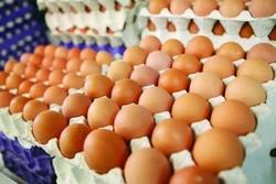 تخم مرغ قهوهای