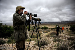 Golestan Natl. Park hosts Swedish birdwaching group