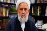 تحکیم وحدت اسلامی راهکار مقابله با اندیشه تکفیری است