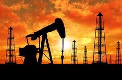 کاهش چشمگیر اکتشاف نفت/کاهش سرمایهگذاریها به پائینترین رقم۷۰سال اخیر