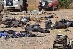 """مقتل ١٢ من """" داعش"""" بينهم مسؤول كتيبة الاقتحامات بقاطع مكحول شمال صلاح الدين"""