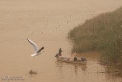 مصوبه مجلس؛ بارقه امیدی برای محیط زیست خوزستان