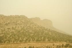 استان کرمانشاه غبارآلود میشود/تشدید وزش باد