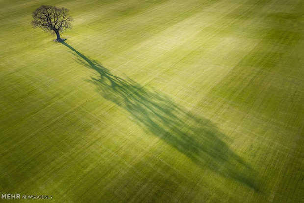 تصاویر هوایی از زیبایی های انگلیس