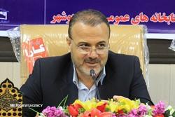 رشد ۹۱ درصدی مشارکت بوشهری ها در هفتمین جشنواره کتابخوانی رضوی