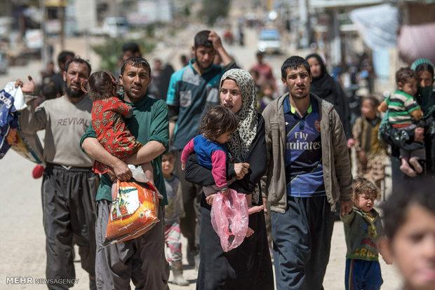 الأمم المتحدة تعلن عودة 31 ألفا إلى مناطقهم المحررة في غرب الموصل