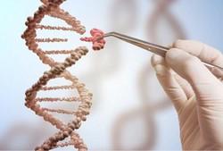 اصلاح ژنتیک