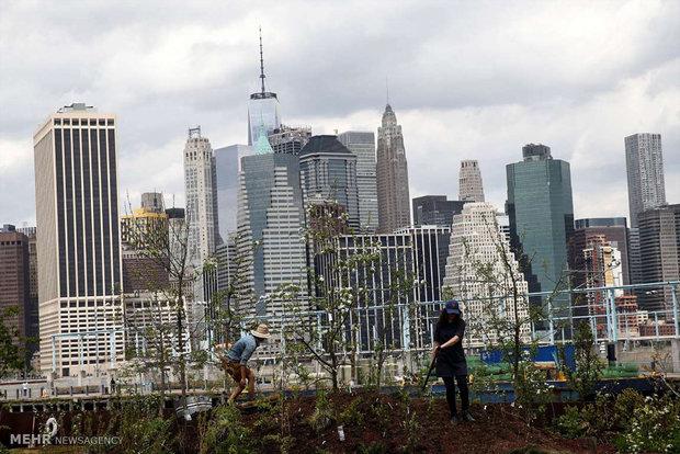 إعصار جديد يتحرك شمالا قبالة الساحل الشرقي للولايات المتحدة ويهدد نيويورك