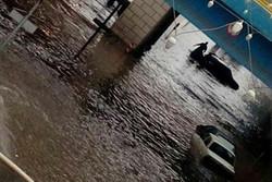 آبگرفتگی اماکن و مدارس در رباط کریم/ شهر زیر آب رفت