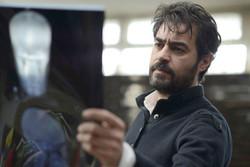 شهاب حسینی کارگردانی تئاتر را تجربه میکند/ مذاکره با بازیگران