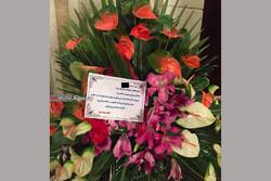 تاج گل مخدوش شده:)