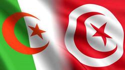 """وزير تونسي يصف الجزائر بـ""""الدولة الشيوعية"""" ويثير أزمة دبلوماسية"""