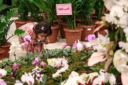 پانزدهمين نمايشگاه بين المللی گل و گياه و تجهيزات وابسته