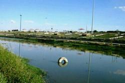 ۶۶ درصد فاضلاب تصفیه نشده کرمانشاه وارد رودخانه قرهسو میشود