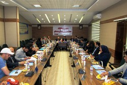 «حمید کرم بیگی» برای ۴ سال سکاندار هیئت هندبال استانهمدان شد