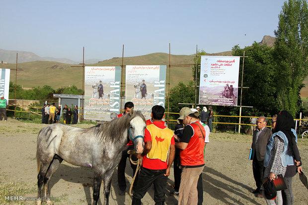 هشتمین دوره مسابقات اسب سواری استقامت کشور