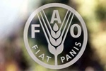 FAO, agriculture ministry celebrate soil day in Iran