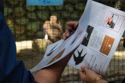 بزرگداشت روز جهانی پرندگان مهاجر در باغوحش تهران