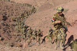 هلاکت ۱۵ عنصر تکفیری در عملیات ارتش مصر در صحرای سیناء