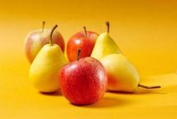 سیب وگلابی