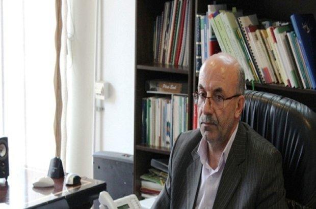 هندیجان دومین قطب پرورش میگوی خوزستان میشود