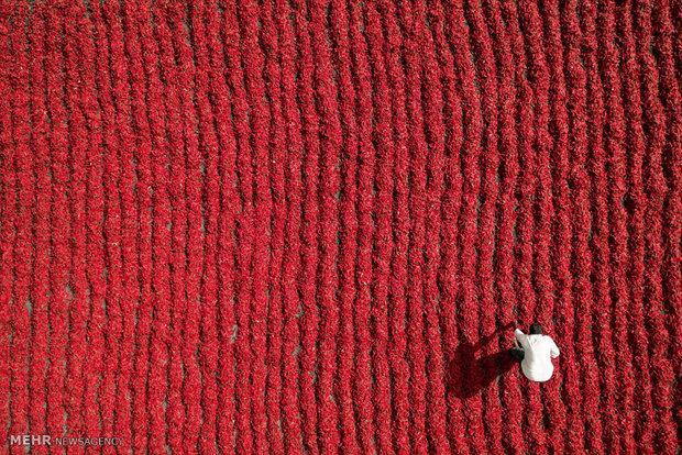 تصاویر زیبای گرفته شده با پهپاد