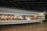موزه کودک و نوجوان فعالیت های «کانون پرورش فکری» را معرفی میکند