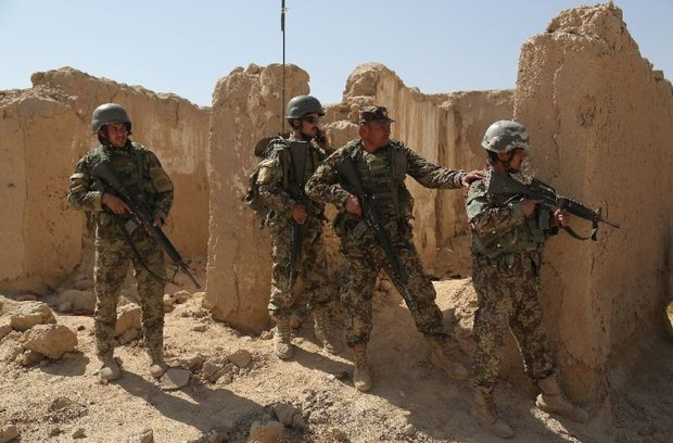 71 militants killed in Afghan forces fresh operations