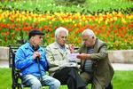 ۴۹ هزار بازنشسته کشوری در استان کرمان وجود دارد