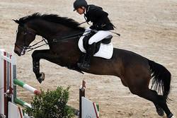 سوارکاری - پرش با اسب