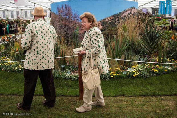 نمایشگاه گل و گیاه چلسی