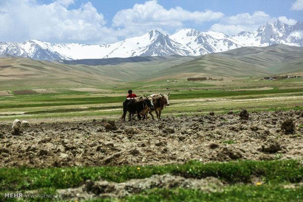 طبیعت بامیان افغانستان