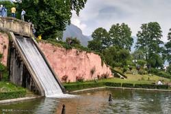 Keşmir'in Nişat Bahçesi