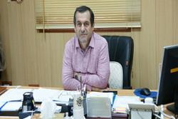 شاپور یاوری - مدیرعامل باشگاه پتروشیمی بندرامام