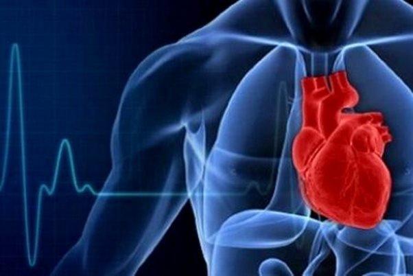 استرس شغلی, امنیت شغلی, ریسک بیماری قلبی, نارسایی قلبی