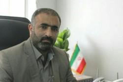 محمدرضا روحانی فر