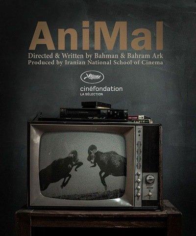 "Iran's ""Animal"" wins award at Cannes Cinéfondation"