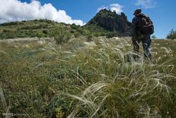 بی اهمیتی به گردشگران در طبیعت و آزمونهای جامع راهنمایان