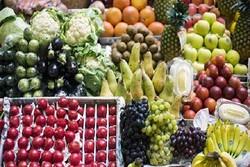 سودان مصر محصولات کشاورزی