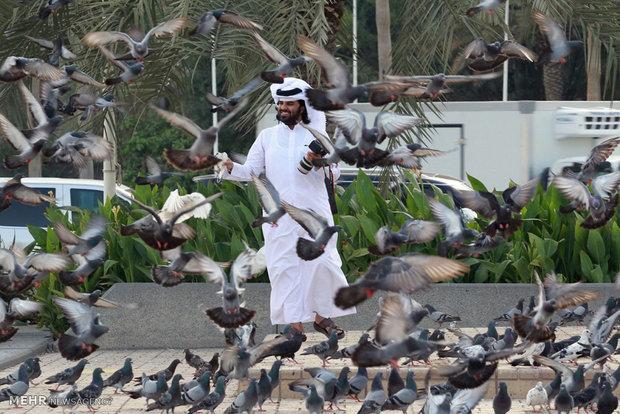 تنش در جهان عرب