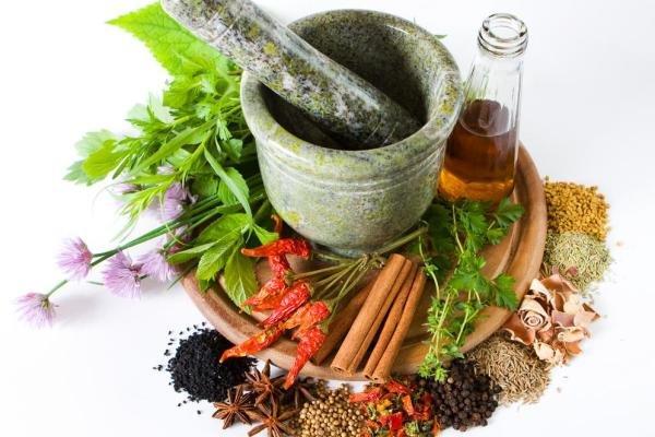 تاثیر اسانس های گیاهی در درمان بیماری لایم,