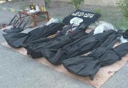 """قوى الأمن الداخلي تقضي على خلية داعشية في """"هرمزكان"""" جنوب ايران"""