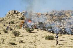 آتش در کوه «کرک بناری» شهرستان چرام دوباره شعله ور شد