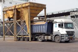 ۱۲۰ هزار تن گندم وارداتی از انبارهای بندر امام ترخیص شد