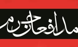 مدافع حرم