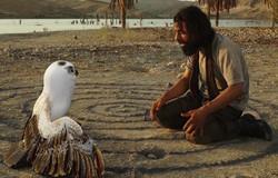 فیلم کوتاه خاکسترنشین